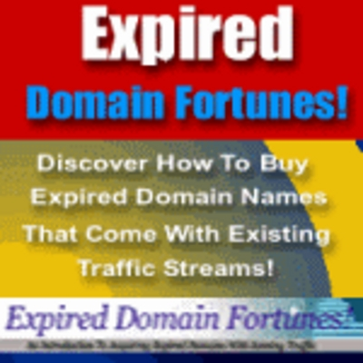 Product picture Expired Domains Fortunes