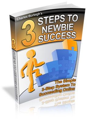 Product picture 3 Steps To Newbie Success!- online marketing tips